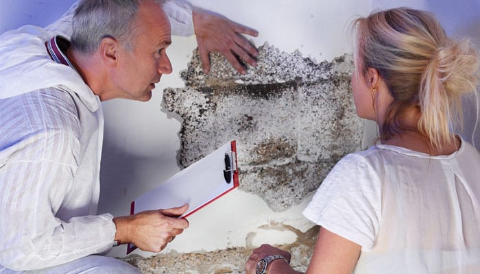 Damp: the Implications to your Property
